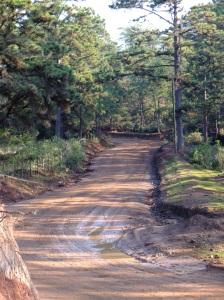 Dirt Road 3